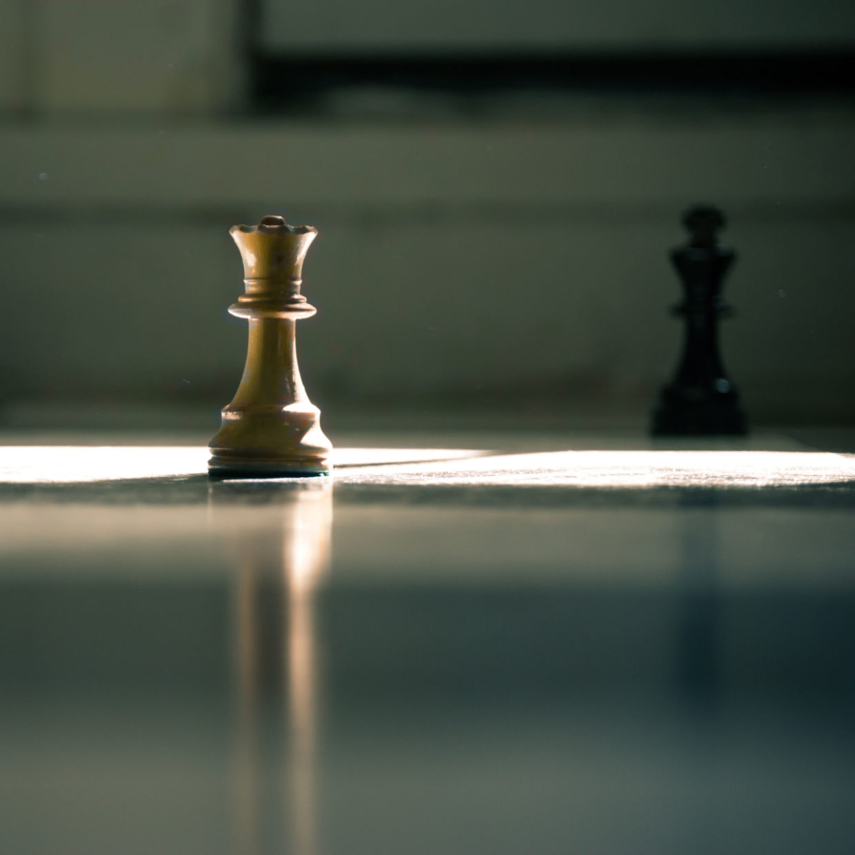 Photo of a white and black chess piece